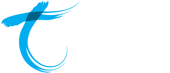 Telair - Committed to delivering what we promise
